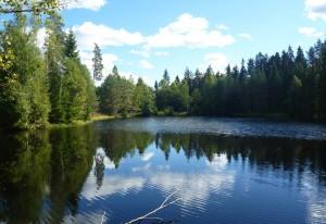 Dammen från väster innan avsänkning