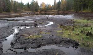Dammen från väster direkt efter avsänkning