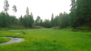 Dammen från väster ett år efter avsänkningen